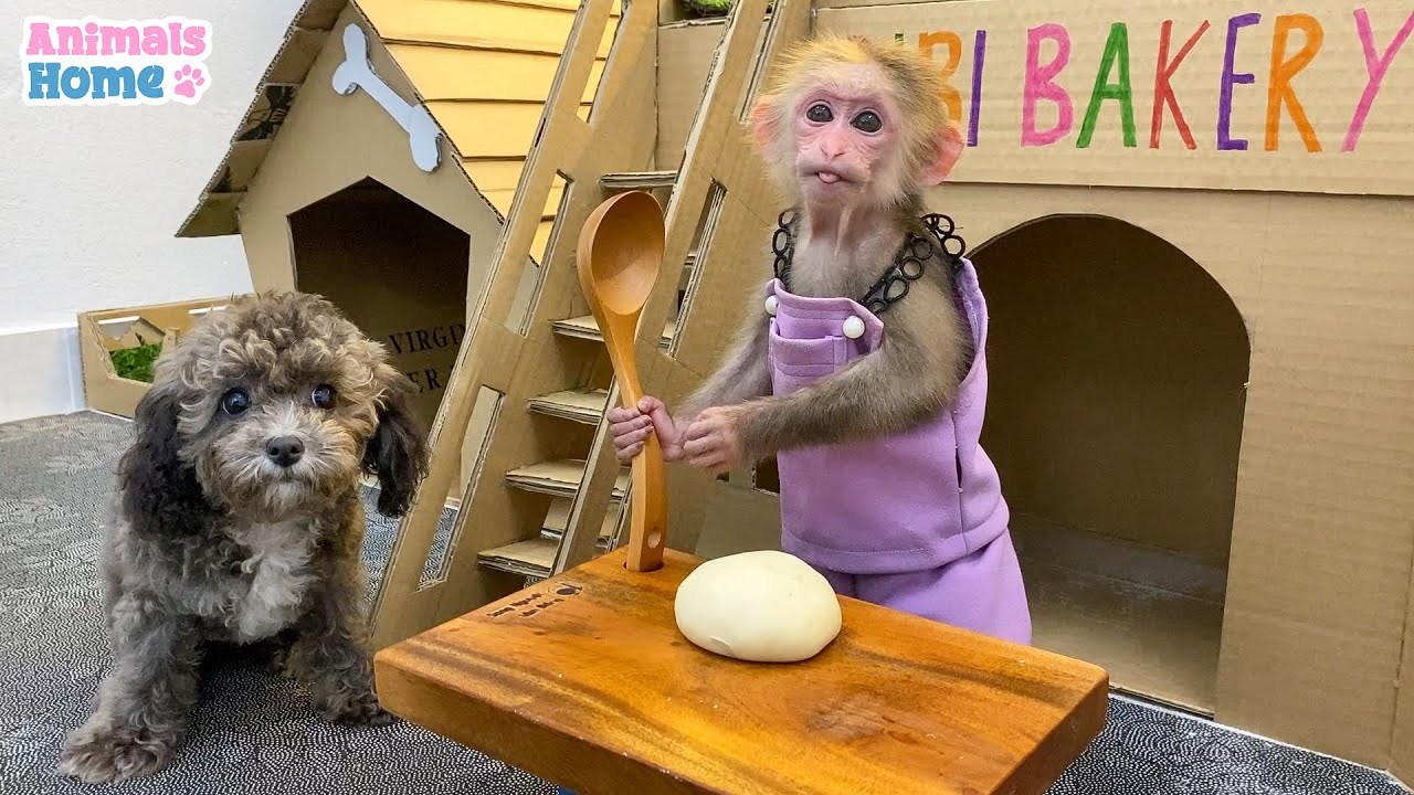 BiBi is so funny when she cooks for puppies