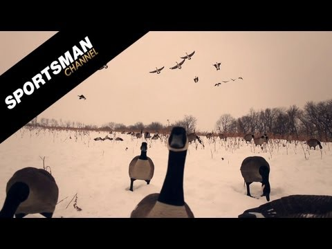Goose Hunting With Bows And Arrows!