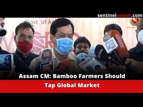 Assam CM: Bamboo Farmers Should Tap Global Market