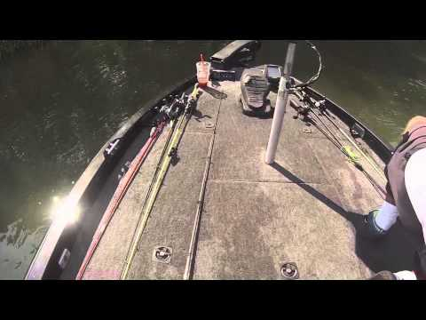 Maryland bass fishing on the elk river youtube for Bass fishing in maryland