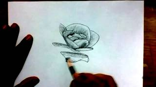 How to Draw a Rose flower with Charcoal Pencil