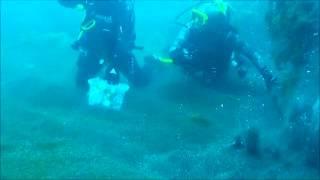 Поиск подводных гидротермальных источников(Ученые из института микробиологии РАН ищут подводные термальные источники в прибрежной акватории мыса..., 2014-08-19T04:46:15.000Z)