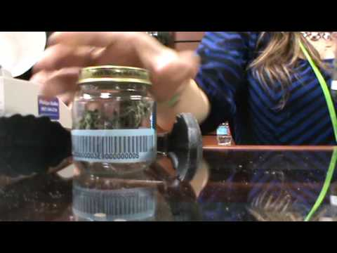 Alaska`s First Legal Marijuana Dispensary Herbal Outfitters Valdez, Alaska Grand Opening