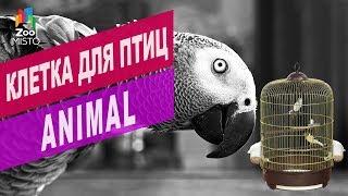 Клетка для птиц Animal | Обзор клетка для птиц Animal