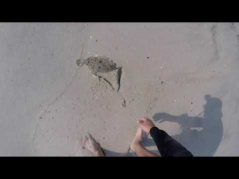 Surf Fluke Fishing Sandy Hook (CRAZY ACTION)