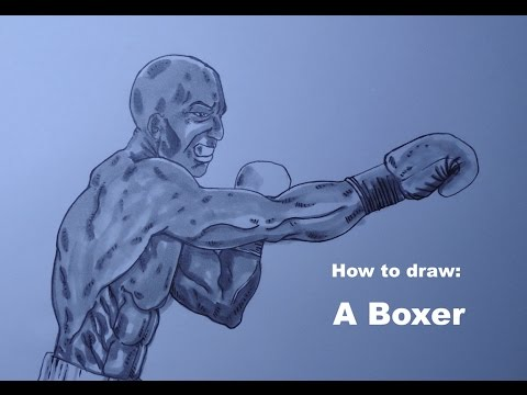 How To Draw A Boxer Youtube