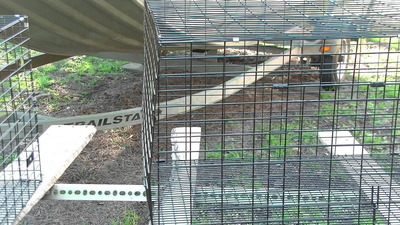 Rabbit Cage Wire Tractor Supply | Tractor Supply And Dumor Small Animal Cage Review Youtube