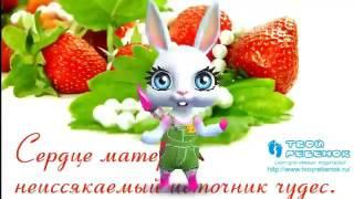 Зайка ZOOBE 'Всемирный ДЕНЬ МАТЕРИ- 14 МАЯ 2017'