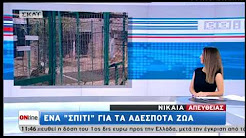 ΣΤΟ ΚΑΤΑΦΥΓΙΟ ΤΟΥ ΦΙΛΟΖΩΙΚΟΥ ΣΩΜΑΤΕΙΟΥ ΝΙΚΑΙΑΣ