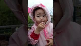 01살10개월_블루베리 따먹기
