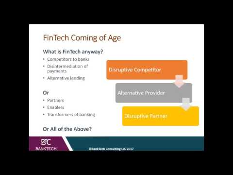 Risk Management in FinTech Innovation