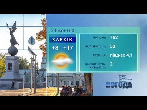 Телеканал Simon: Simon Погода на 23 жовтня 2020