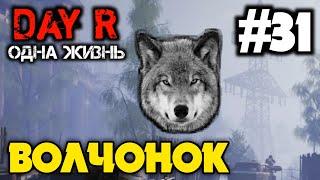 ВОЛЧОНОК | ОДНА ЖИЗНЬ В DAY R 1.654 | Evgen GoUp!