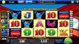 Live Slot Machine More Chili