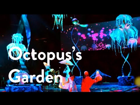 Inside Look: The Beatles LOVE by Cirque du Soleil | Octopus