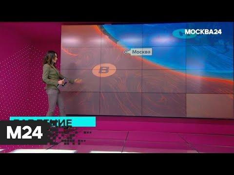 """""""Погода"""": первый температурный рекорд в этом году зафиксирован в столице - Москва 24"""