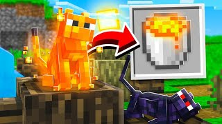 10 PETS AND MOBS MINECRAFT NEVER ADDED!