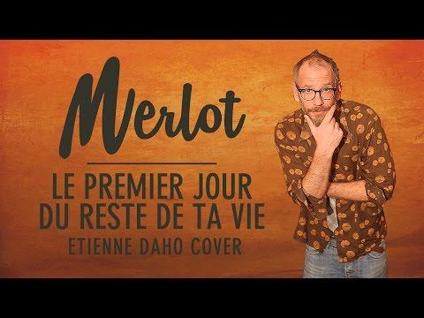 Booboo'zzz All Stars Feat. Merlot  Le Premier Jour Du Reste De Ta Vie Etienne Daho Cover