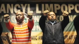 Is Malema still king of Seshego?