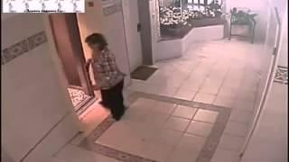 Мопсу чуть не оторвало голову лифтом
