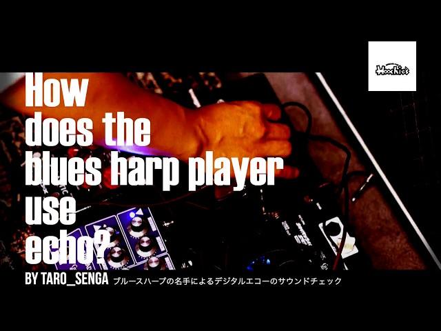 How does the blues harp player use echo? by Taro Senga