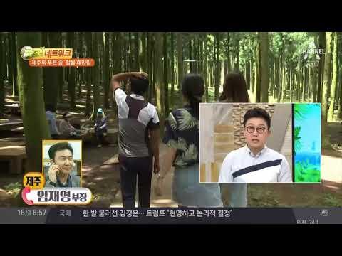 절물휴양림, 제주시 봉개동의 피톤치드 왕국!