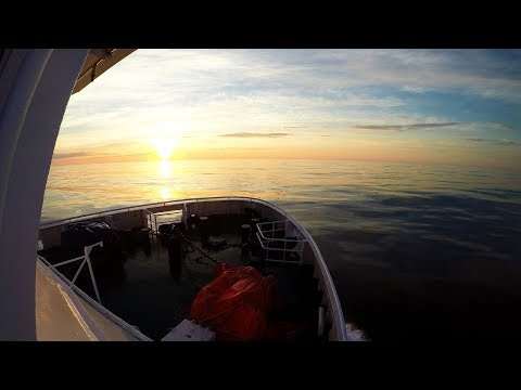 работа на рыболовном корабле