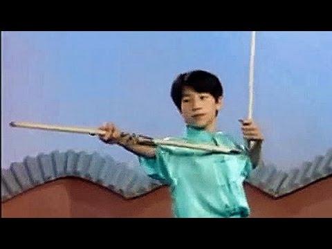 Wushu 3-part staff basic moves