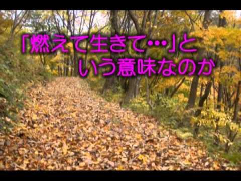 愛の枯葉  神戸一郎