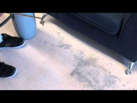Carpet Cleaners - Drymaster Carpet Cleaning