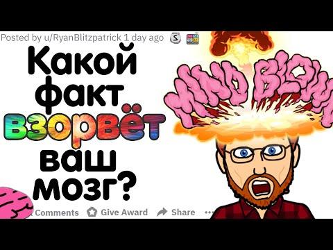 Вопрос: Медуза бессмертна. Правда ли это?