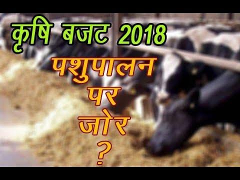 Pashupalan पर भी रहेगा ज़ोर Budget 2018 मे ? / Budget 2018 मे पशुपालन के  लिए क्या रहेगा ख़ास