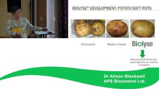 Rot identification & control - Storage Forum 2016 - Glyn Harper, Alison Blackwell & Tom Neat