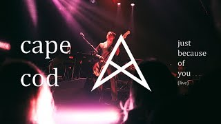 Cape Cod - Just Because Of You (feat. Daramola) (Live)