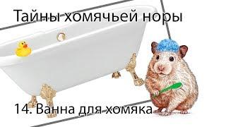 Норка Хомяка 14. Ванна для хомяка