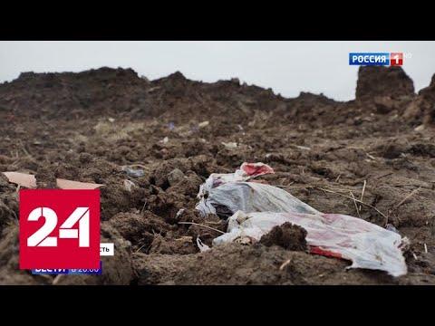 Сняли то, что снимать никак нельзя: как в водоохранной зоне Москвы создали мусорный полигон