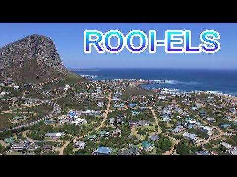 Rooi-Els