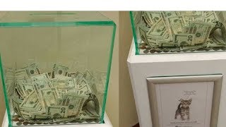 Somebody Just Dropped $8,000 Into This Animal Shelter's Donation Box thumbnail