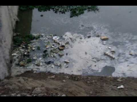 SARYU POLLUTION 1 mpeg4