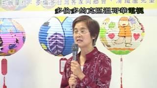 Taiwan Lantern Festival of Color, 台灣花燈節, 20080821