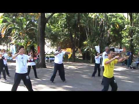 Comemoração do World Tai Chi Day 2013