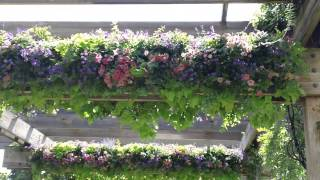 Gorgeous Flower Trellis