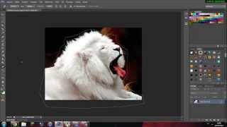 Tutoriais Photoshop Cs6 - Como Tirar Fundo de Uma Imagem