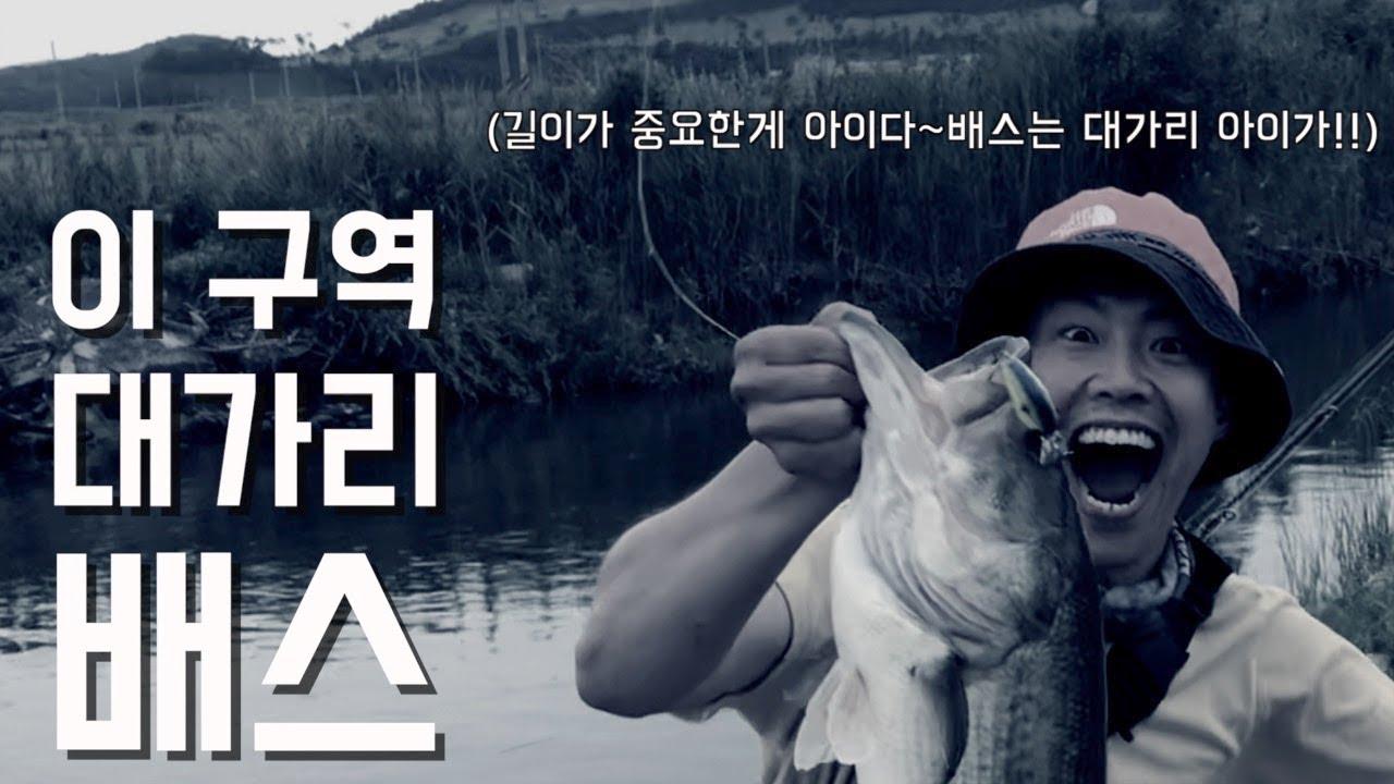 [아트배스] 지난 편을 만회하기 위해 비주얼과 차피디가 떳다! 그리고 대호만에서 만난 이 구역 대가리 배스!!!.......bass fishing(당장낚시가고싶음주의)
