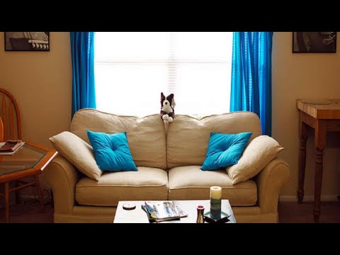 How To Make Sound Proof Curtains (DIY) for Your Home Recording Studio