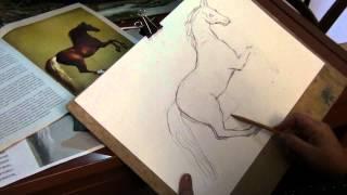 Рисуем лошадь или коня часть 2