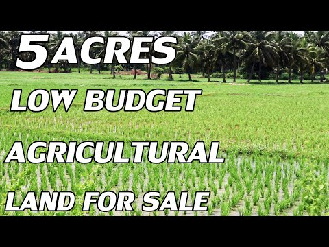 5 ACRE LAND FOR SALE | LOW BUDGET PROPERTY SALE | AGRICULTURAL CULTIVATION COMPACT  LAND PROPERTY TV