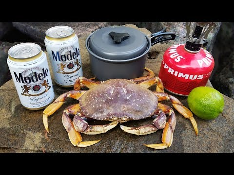 Fresh Caught Dungeness Crab Cooked In BEER!!