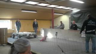 Weight Pull Ewpl, Staffordshire Bull Terrier Bella Pulls 598 Kg