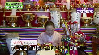 천기누설 굿 그리고 신내림  신어머니 믿고 따르면! 선녀점술 010-4177-5688 운세 사주 궁합 서울 …